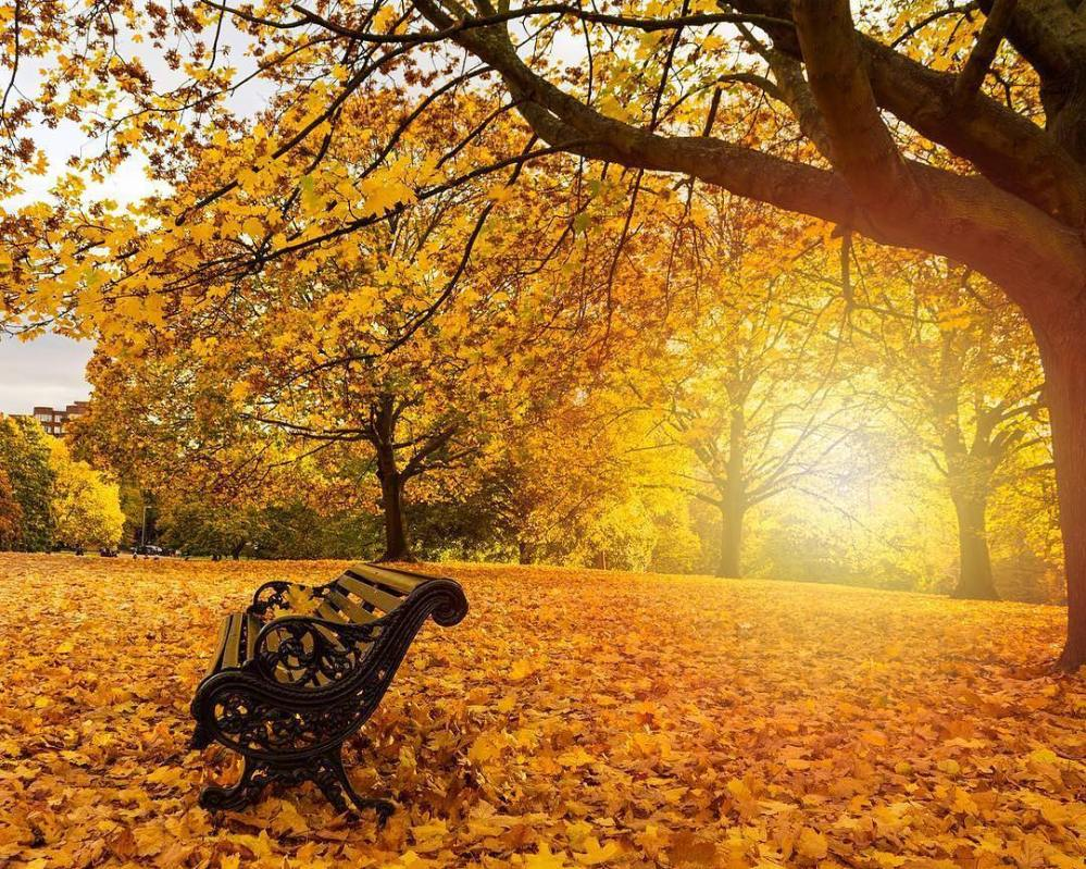 London-autumn-picture-philipp_pley